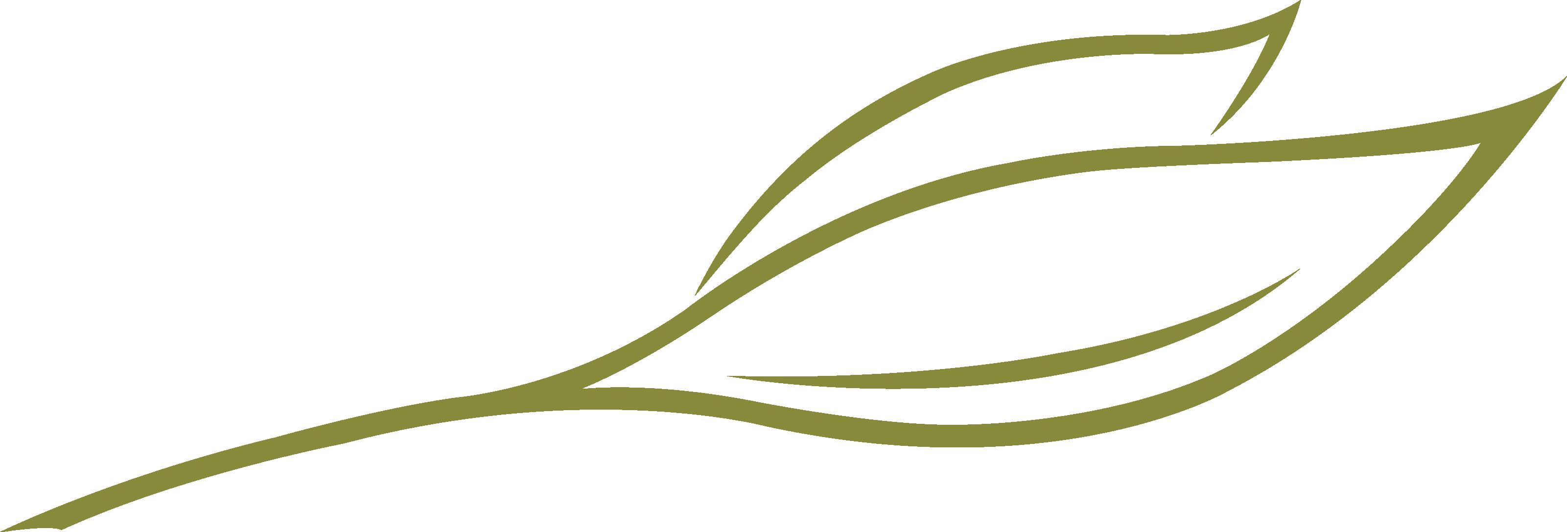 Logo Blatt grün mit Stil