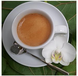 Kaffeetasse weiss freigestellt klein